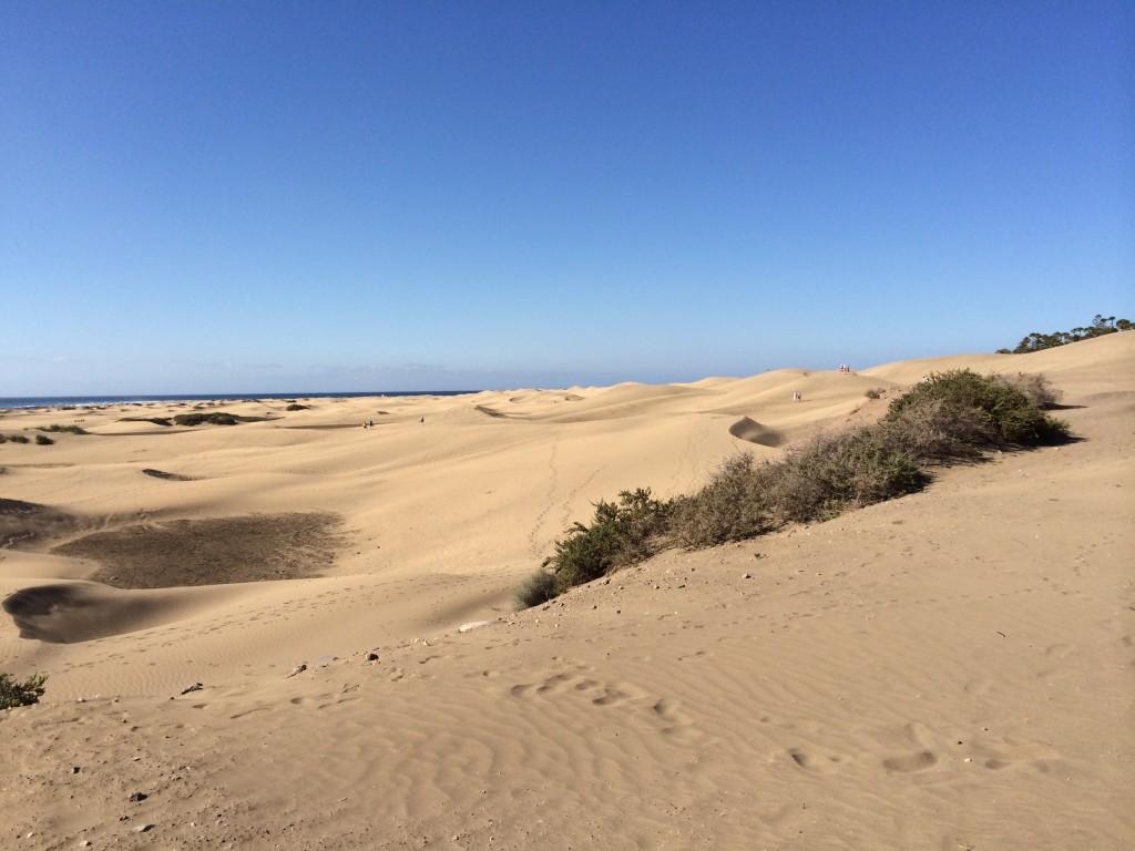 Gran Canaria - Dünen