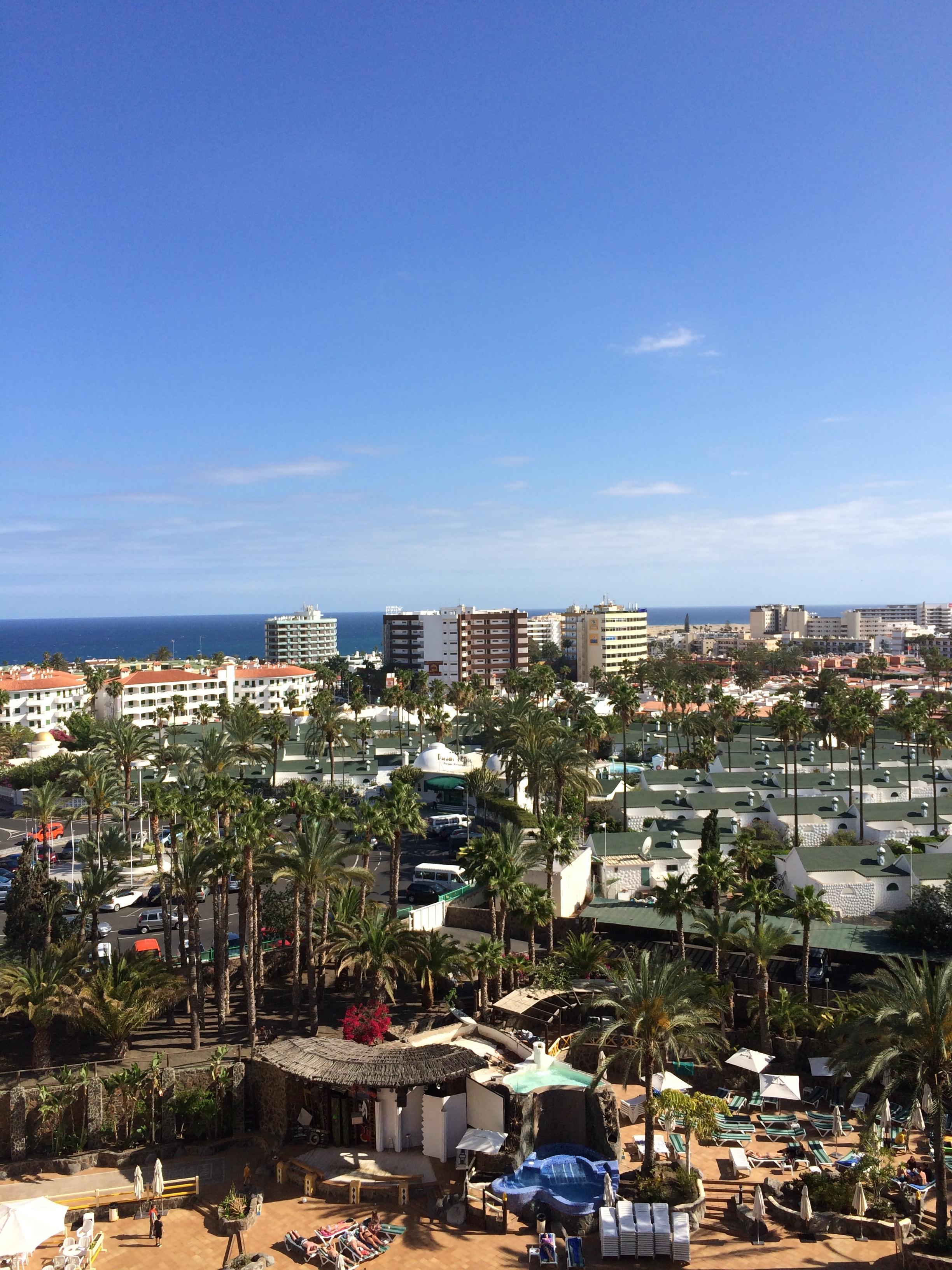 Schlangen halten Gran Canaria in Atem 4