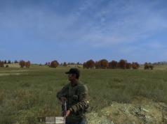 DayZ (Bild: Bohemia Interactive)